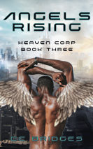 Cover of Angels Rising
